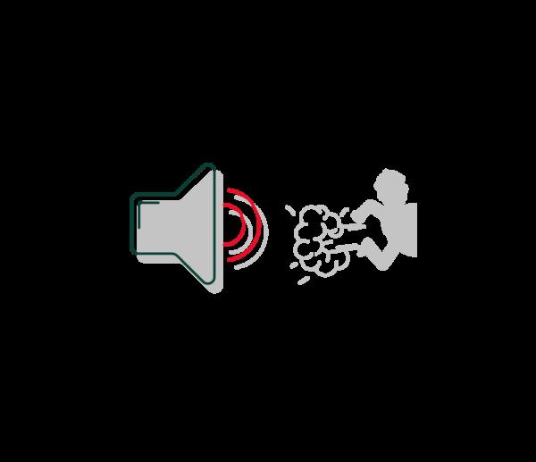 Lautsprecher vertreibt Einbrecher